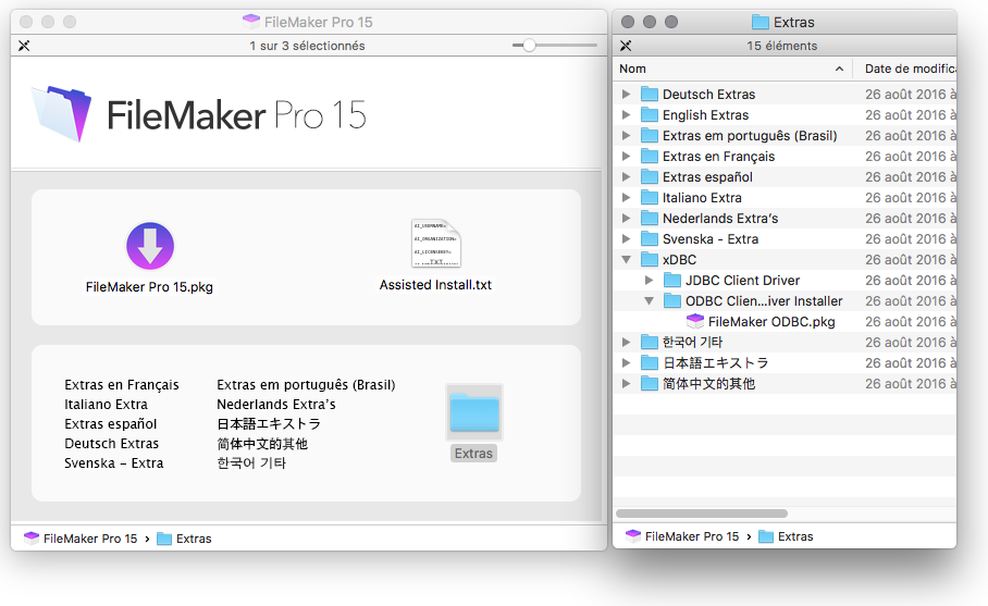 FileMaker ODBC driver