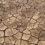 Urgence famine Afrique : vos licences FileMaker à la rescousse