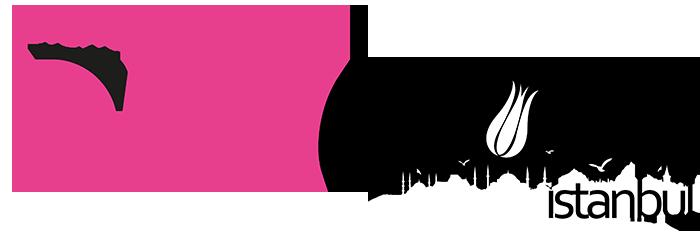 FileMaker Devcon Istanbul Logo